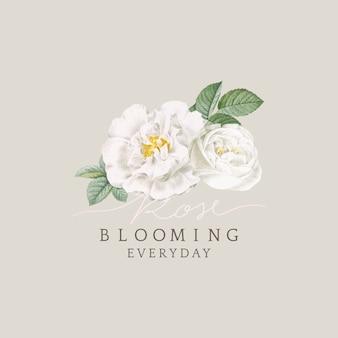 Biała róża kwitnący projekt karty
