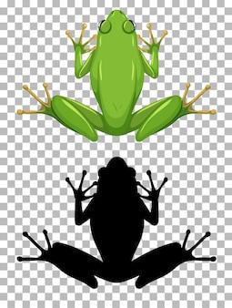Biała żaba wargowa z jego sylwetka na białym tle