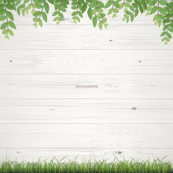 Białe drewno tekstury tło z kadrowaniem zielonych liści. ilustracja wektorowa.