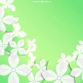 Białe kwiaty w tle