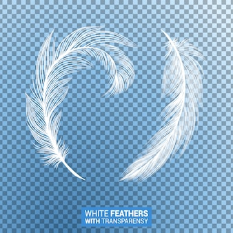 Białe puszyste pióra realistyczny efekt przezroczystości
