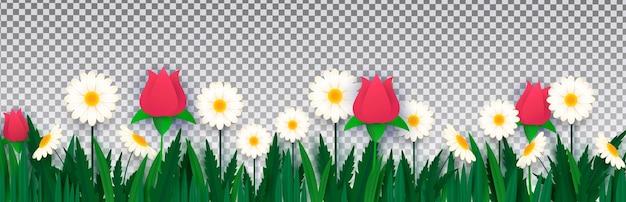 Białe stokrotki i róże w trawie na przezroczystym