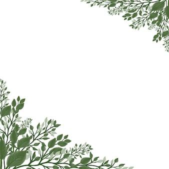 Białe tło ze świeżą zieloną dziką rośliną