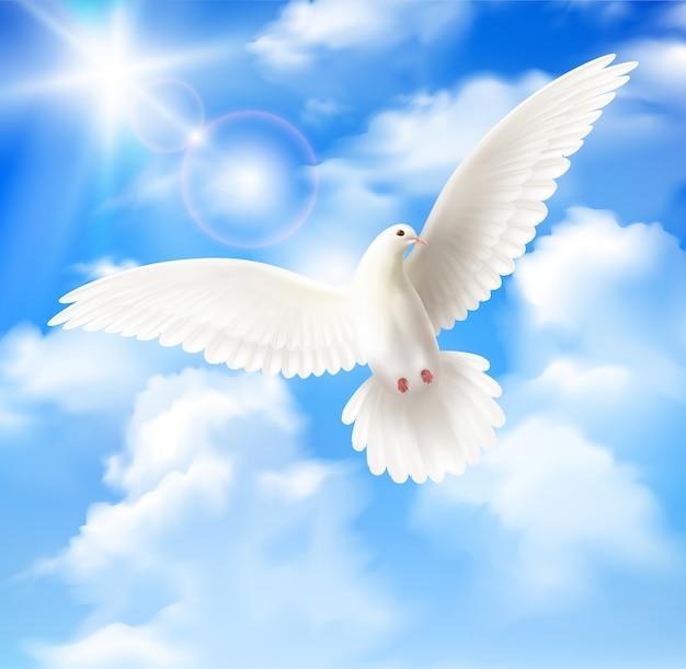 Biały gołąb z niebieskim niebem i chmurami