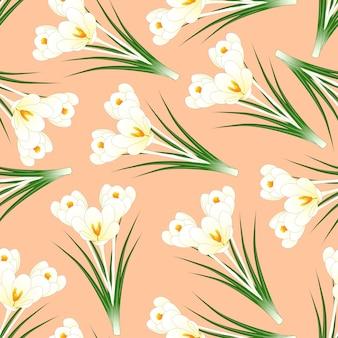 Biały krokus kwiat na jasnym pomarańczowym tle