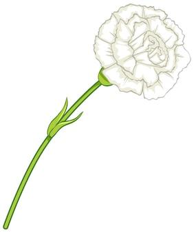 Biały kwiat goździka w stylu kreskówki na białym tle