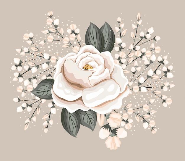 Biały kwiat róży z liśćmi projekt malarski, naturalny kwiatowy ornament roślinny dekoracja ogrodowa