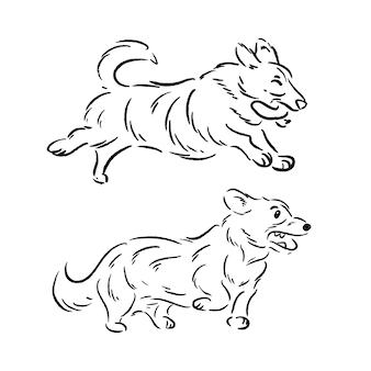 Biegnący pies corgi zestaw ilustracji ręcznie rysowane i szkic