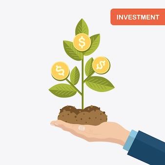 Biznesmen posiada sadzonki drzewa pieniędzy ze złotymi monetami, ziemi, ziemi. inwestycje, bogactwo