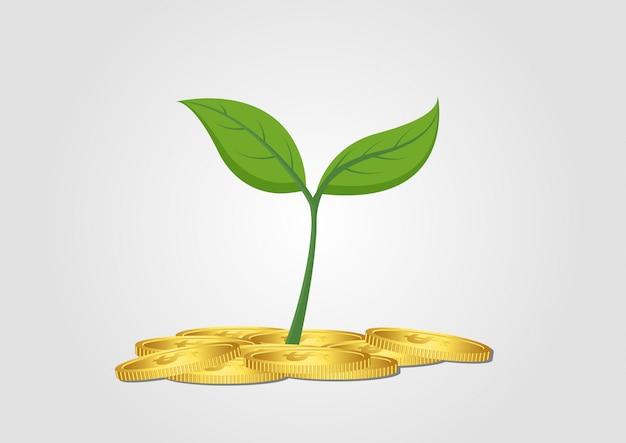Biznesowego pojęcia narastający drzewo od stosu złota moneta