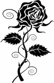 Black rose clipart