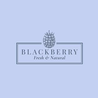 Blackberry streszczenie znak, symbol lub szablon logo.