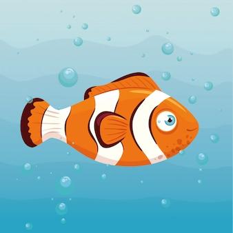 Błazenek morski w oceanie, mieszkaniec świata morskiego, urocze stworzenie podwodne, fauna podwodna