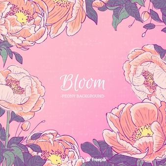 Bloom peony flowers background