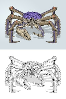 Blue king crabs w rysunku odręcznym