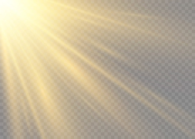 Błysk Słońca Z Promieniami I światłem Reflektorów. Gwiazda Rozbłysła Blaskiem. żółte świecące światła Promienie Słońca. Specjalne Efekty świetlne Na Przezroczystym Tle. Premium Wektorów