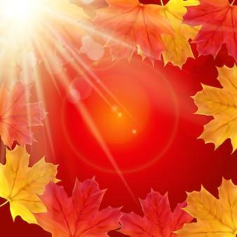 Błyszczące jesienne liście naturalne.