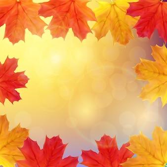 Błyszczące jesienne liście transparent tło. ilustracja