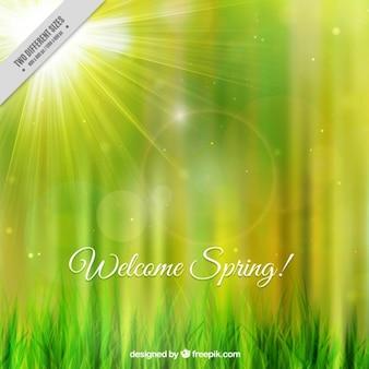 Błyszczące powitanie wiosny tła