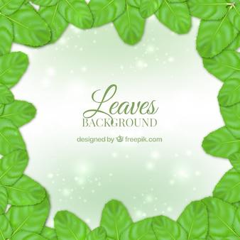 Błyszczące tło z zielonymi liśćmi realistycznych