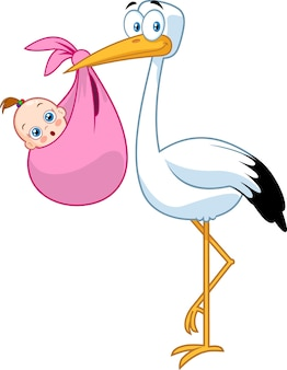 Bocian dostarczający nowonarodzoną córeczkę. ilustracja na białym tle