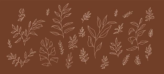 Boho wektor estetyczny zestaw botaniczny liniowych gałązek handdrawn. kolekcja oddziałów artystycznych w stylu czeskim do projektowania zaproszenia ślubne. styl retro elegancki rysunek zioło. dekoracja liści roślin