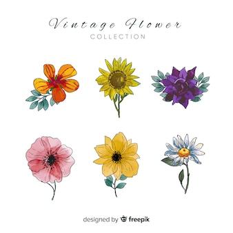 Botaniczna kolekcja kwiatów i liści
