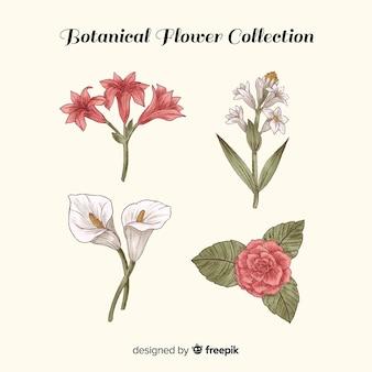 Botaniczny vintage zestaw kwiatów