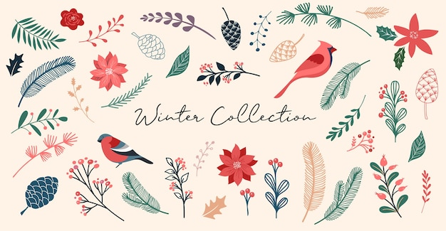 Boże narodzenie botaniczne, elementy świąteczne, zimowe kwiaty, liście, ptaki i szyszki