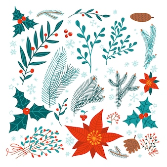 Boże narodzenie kwiatowy zestaw elementów projektu - poinsecja, ostrokrzew, gałęzie sosny, jemioła, wiązka gałęzi. zimowe rośliny i kwiaty.