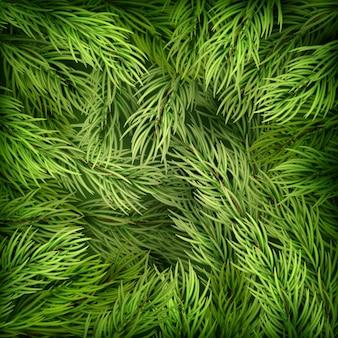 Boże narodzenie tło z gałęzi jodły. a także zawiera