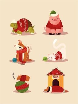 Boże narodzenie uroczy żółw świnia pies i kot z akcesoriami dzianinowymi czapkami, swetrami, szalikami