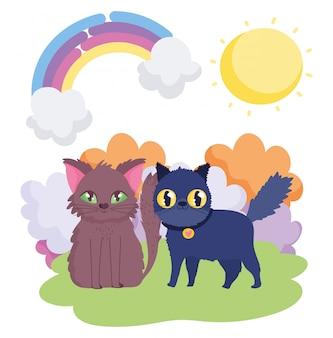 Brązowy kot i czarny kot z kołnierzem zwierzęta domowe krajobrazu
