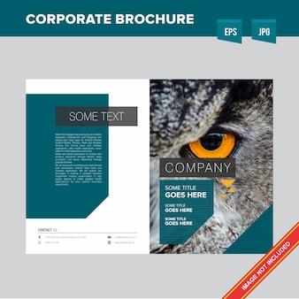Broszura organizacji forest and wildlife organisation