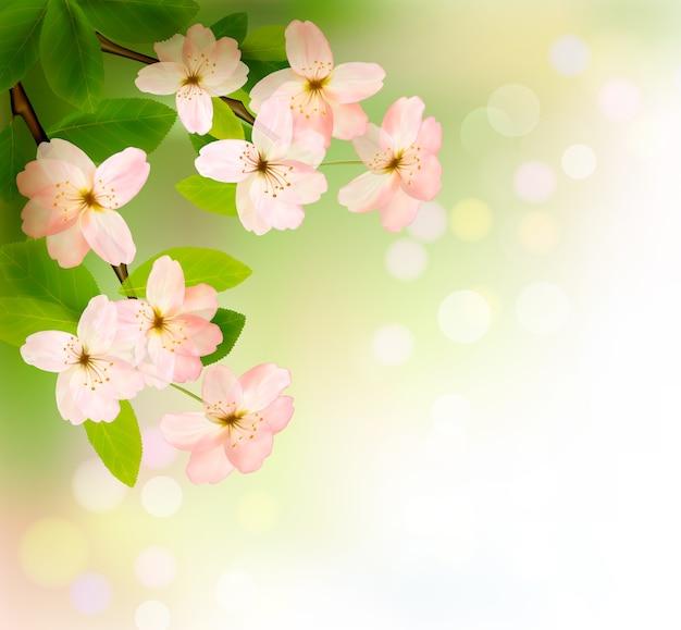 Brunch kwitnących drzew z wiosennymi kwiatami