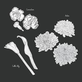 Bukiet z ręcznie rysowane wiosennych kwiatów wektorowych ilustracji.