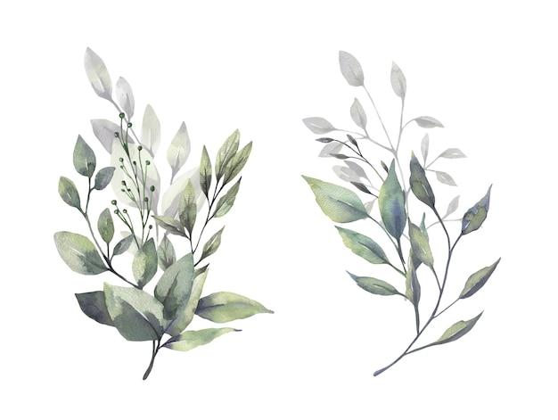 Bukiety akwareli zieleni