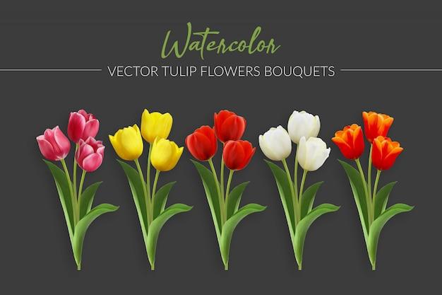 Bukiety kwiatów tulipan akwarela wektor