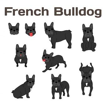 Buldog francuski w akcji, szczęśliwy pies