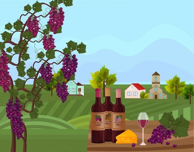 Butelki wina i tło winorośli