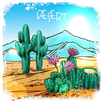 Cactus in desert sketch