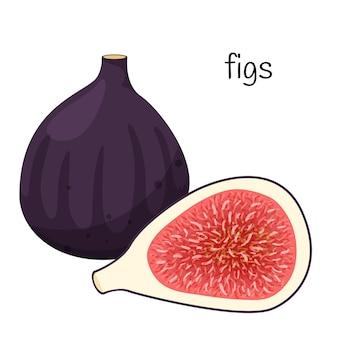 Cały owoc figi i połowę z nasionami i miąższem. egzotyczny owoc. płaska konstrukcja.