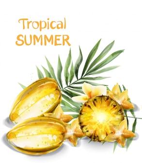 Carambola gwiazda owoców i ananasów plasterki akwarela