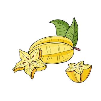 Carambola lub starfruit. żółte owoce tropikalne i kawałki na białym tle. ilustracja jasne lato. egzotyczne jedzenie naturalne.