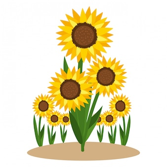 Cartoon charakter słonecznika foral