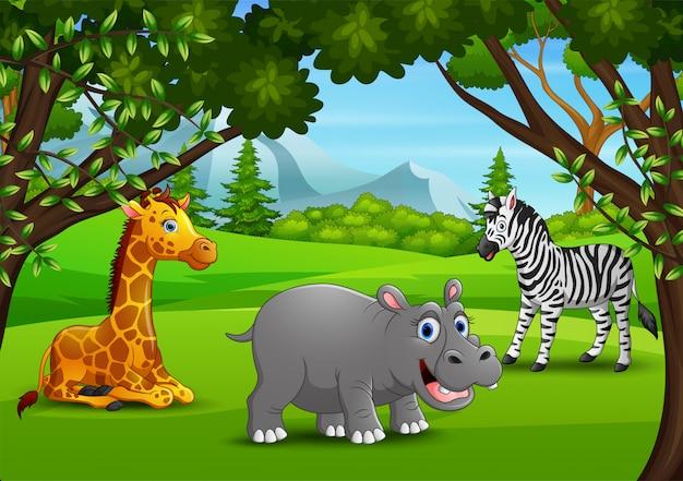 Cartoon dzikich zwierząt korzystających z dżungli