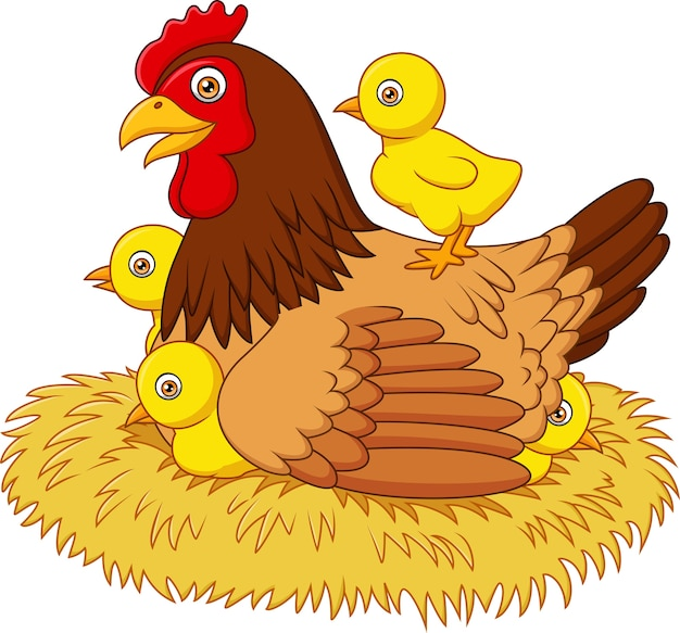Cartoon kura z jej kurcząt