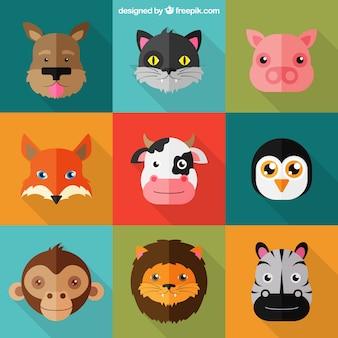 Cartoon zwierzęta kolekcja