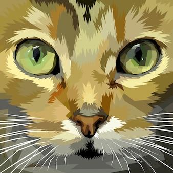 Cat face up close