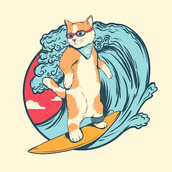 Cat surfing